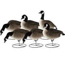 Canada Goose Decoys | Decoy Pro